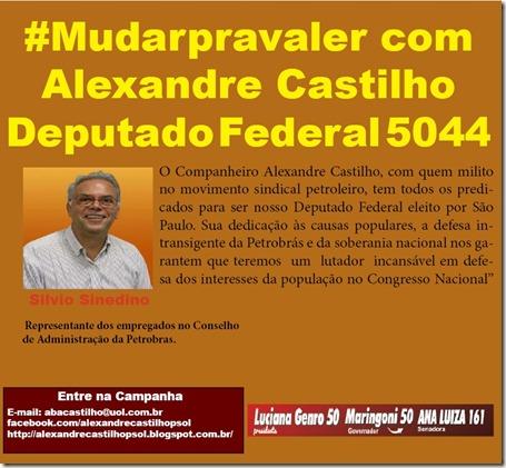 Banner castilho Deputado Federal