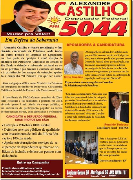 Castilho Deputado Federal